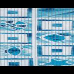 αφρώδης-διάδρομος-σε-ρολό-με-σχέδιο-κοχύλι-065χ15m (2)
